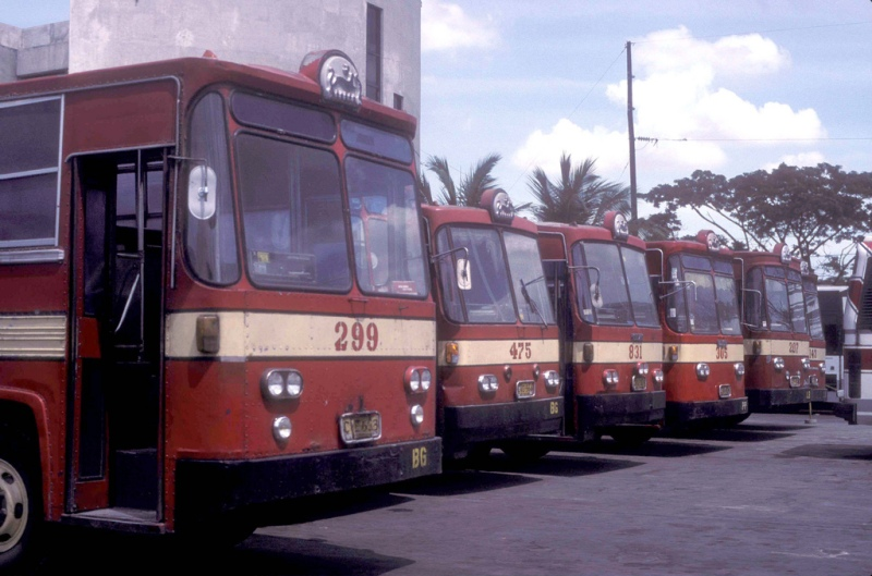 Phillipines Rabbit Buses